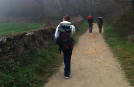 Oferta 1: Camino santiago 150 euros